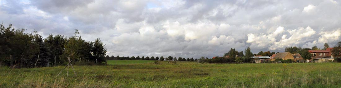 garten_panorama-1100.jpg