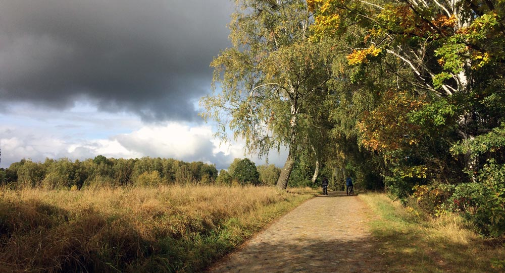 161010_herbst_spaziergang