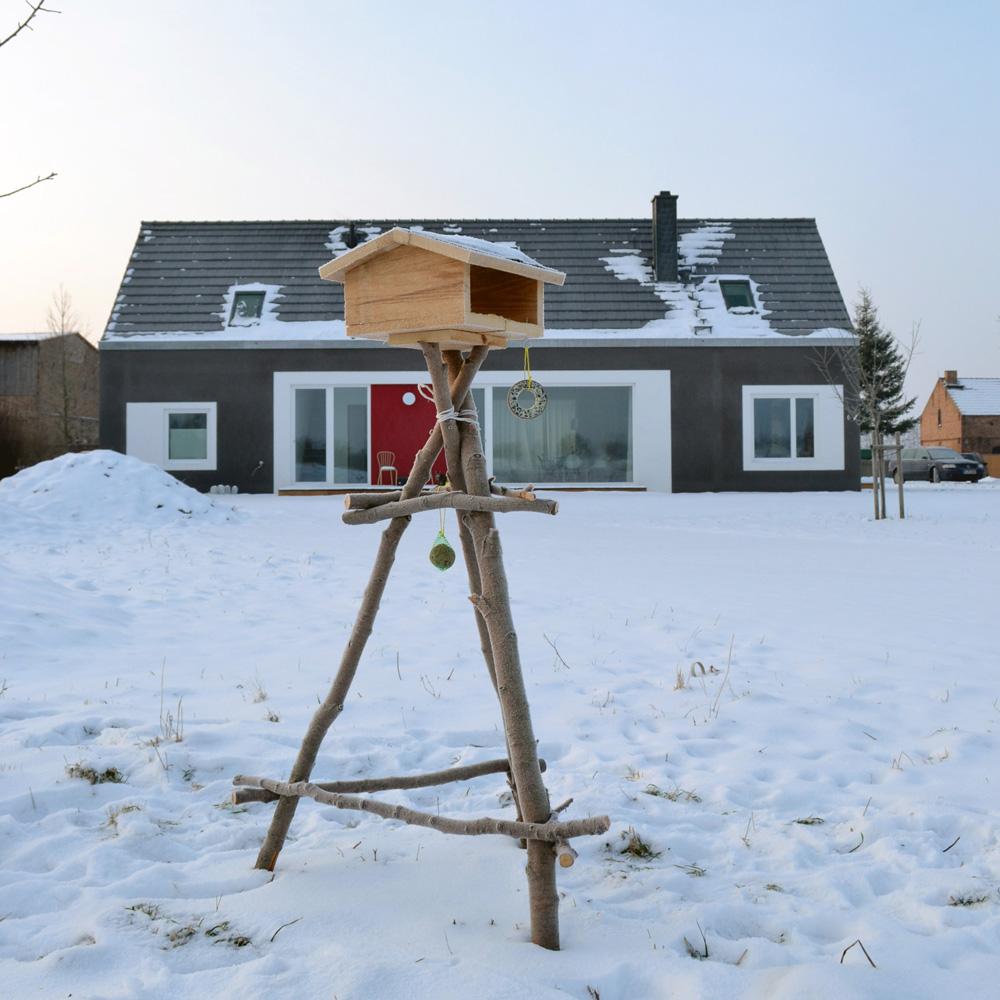 vogelhaus-quadrat1.jpg